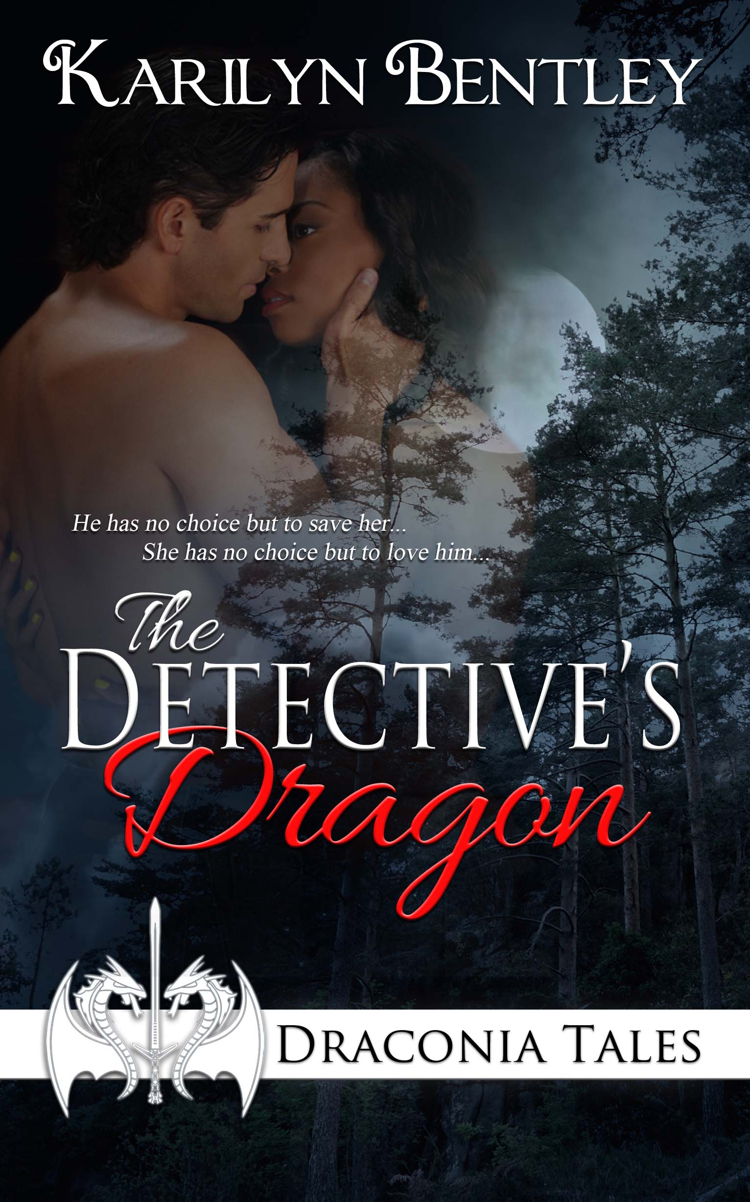 The Detectives Dragon Cover Art